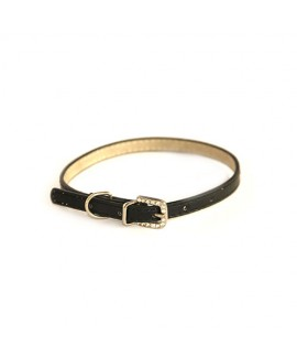 Puppy and Cat Black Collar
