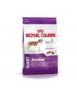 Royal Canin Giant Junior Dog Food-4Kg
