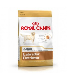 12 kgs Royal Canin Labrador Adult Dog Food