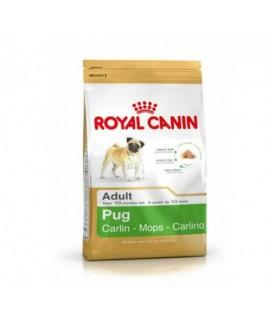 Royal Canin Pug Adult 0.5 kg Dog Food
