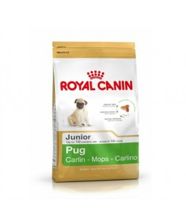 Royal Canin Pug Junior Puppy Food 500 gm