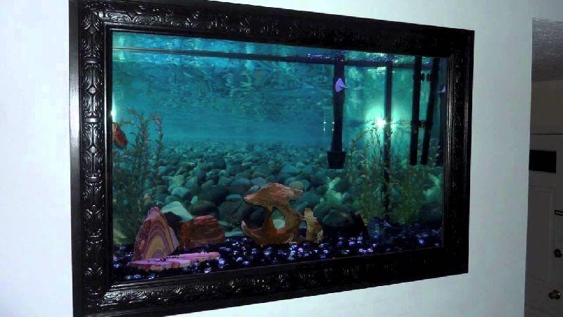 Wall Mounted Fish Aquariums