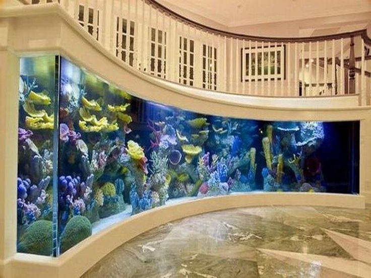 Wall Mounted Fish Aquariums Manufacturer In Delhi Delhi