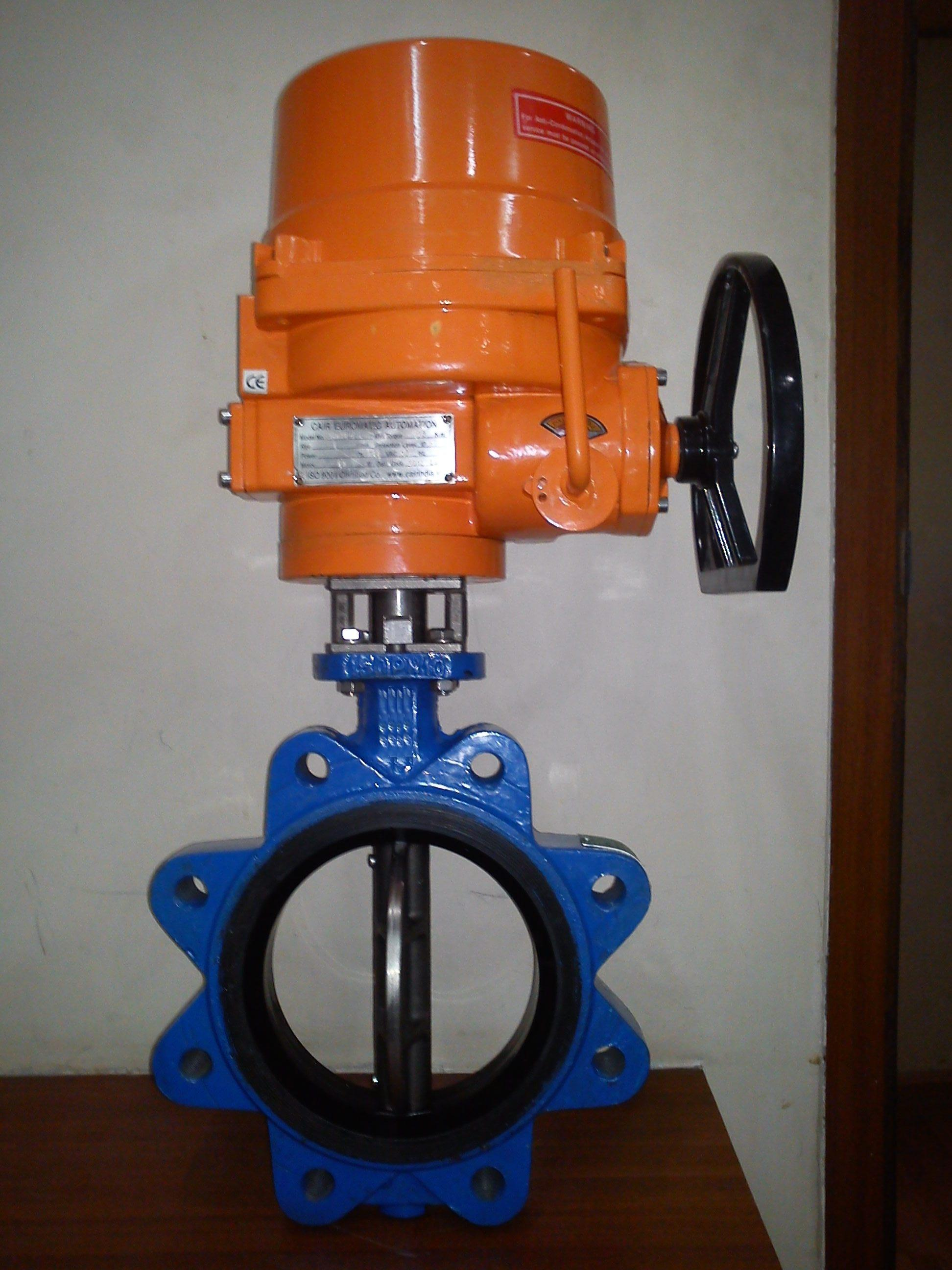 Motorized Lug Type Butterfly Valve Manufacturer
