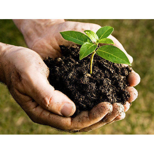 Bio Organic Manure Wholesale Suppliers in Maharashtra India by Mores
