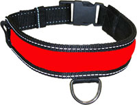 Polybrite Dog Collar