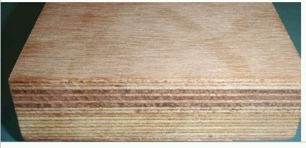 Container Flooring Plywood Sheets