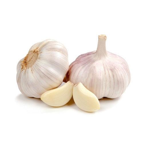 Image result for garlic-