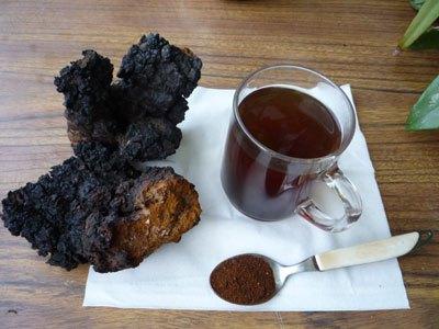Chaga Mushroom Tea Benefits