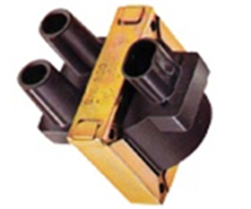 Double Outlet Ignition Coils