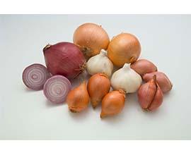 Onion Mixed