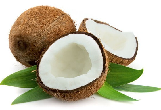 Fresh Coconut Manufacturer in Chennai Tamil Nadu India by