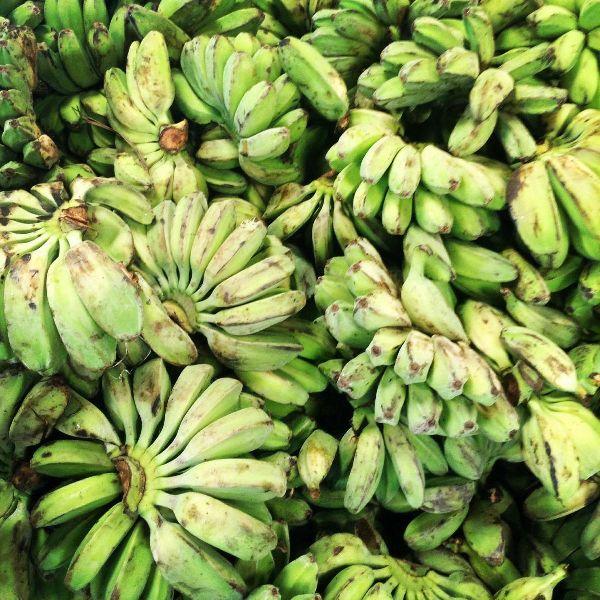 Fresh Green Cardava Banana