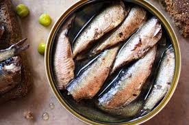 Canned Sardine Fishes