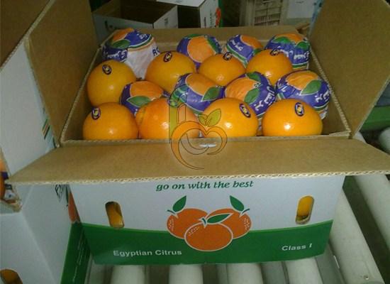 Fresh Oranges & Valencia Oranges