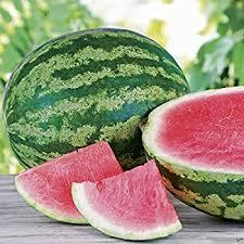 Watermelon Seeds, Pumpkin Seeds