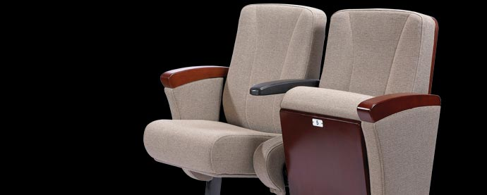 Buy Auditorium Seating Chair From Eurotech Design Systems Pvt Ltd India Id 1404935