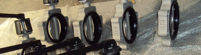Single Piece Molded Seat Concentric Butterfly Valve  (Single Piece Molded Seat Concentric Butt)