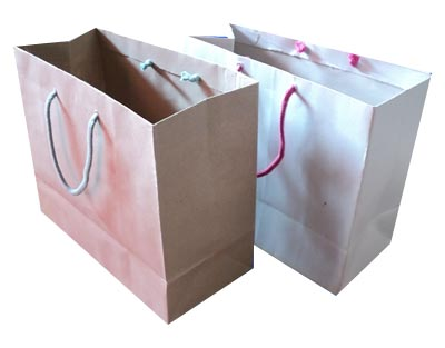 Image result for shoe paper carry bag