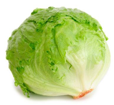 Fresh Iceberg Lettuce (Fresh Iceberg Lettuc)