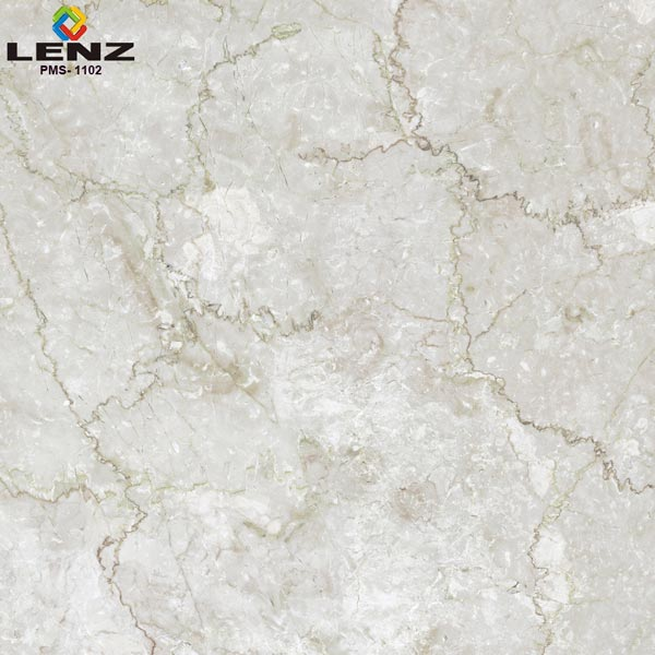 Digital Polished Vitrified Tiles (PMS 1102)