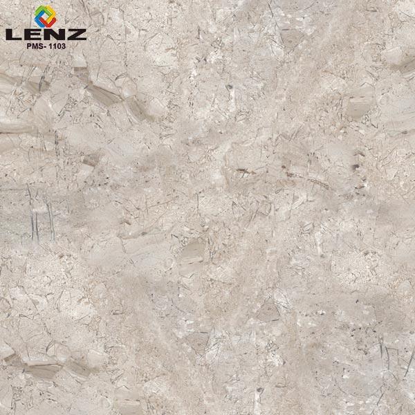 Digital Polished Vitrified Tiles (PMS 1103)