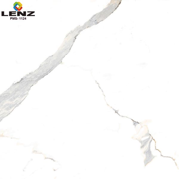 Digital Polished Vitrified Tiles (PMS 1124)