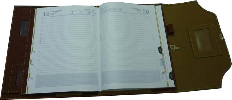 New Year Diaries