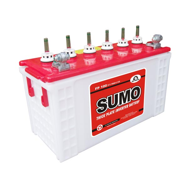 Thick Plate Inverter Batteries (FP 100)