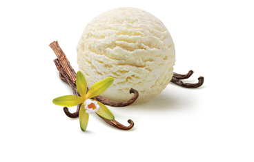 project report on meriiboy icecreams Ingredients1 colleague's camera 2 ice-cream sticks - rooban and others3 rice flour - ice cream4 tea cup - ice-cream cup 5 client with no budget for facebook posts.