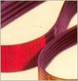 Predator Powerband Gates Transmission Belt