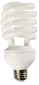 Compact Fluorescent Spiral Bulb