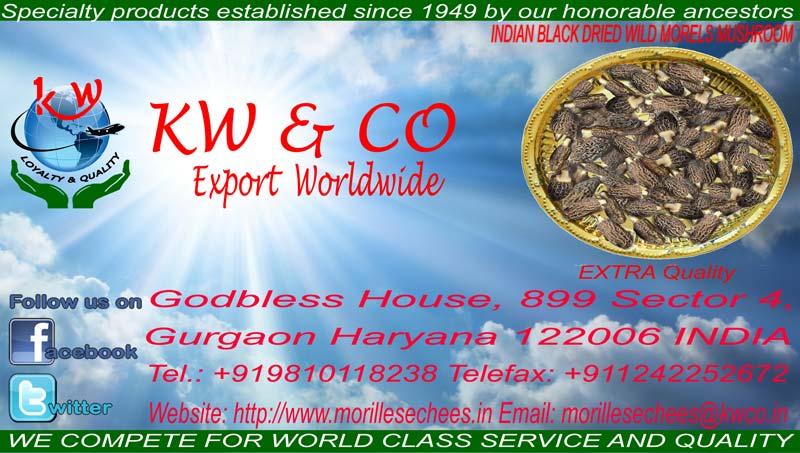 Indian Black Dried Wild Mushroom