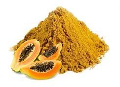 Dehydrated Raw Papaya Powder