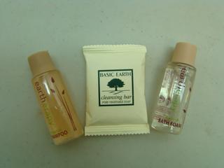Travel Size Shampoo, Conditioner (182948441)