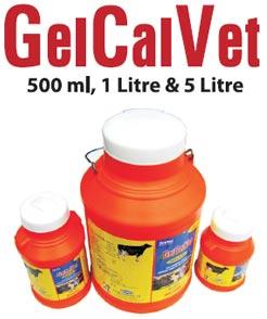 Gelcalvet Calcium Tonic