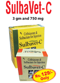 Sulbavet C Injection