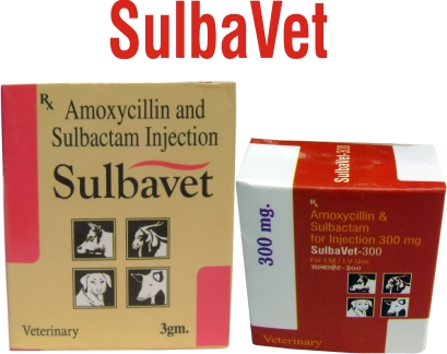 Sulbavet Injection