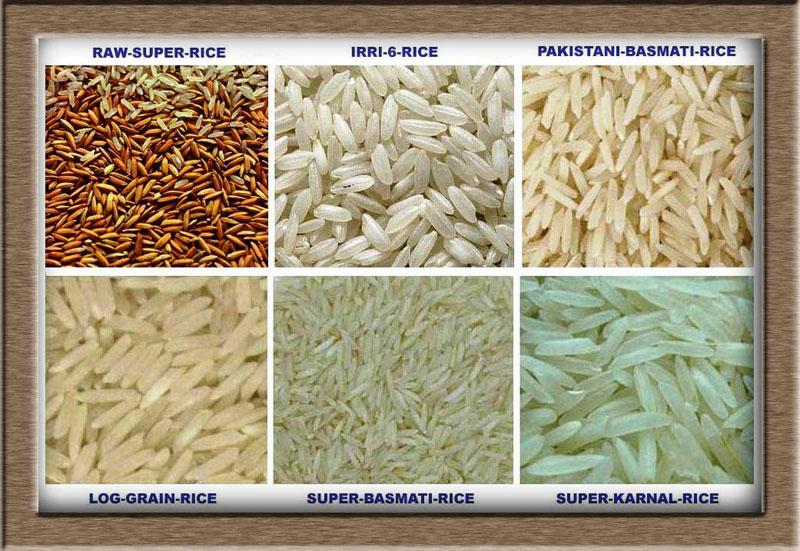 Pakistani Basmati Rice Buy basmati rice Pakistan from SA Global Services