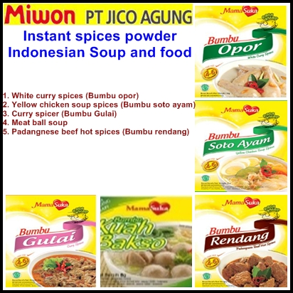 Instant Soup Spices Powder Manufacturer & Exporters from