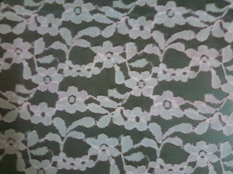 Nylon Fabrics (rim zim)