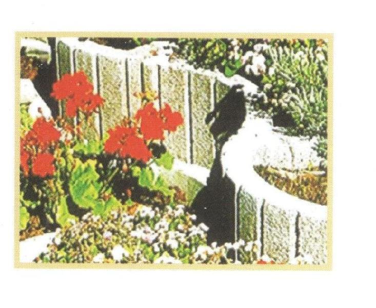 Concrete Flower Blocks