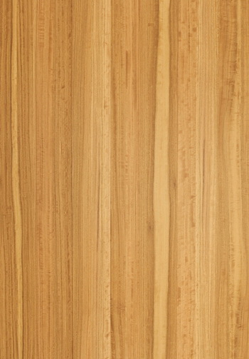Prefinished Natural Wood Veneer