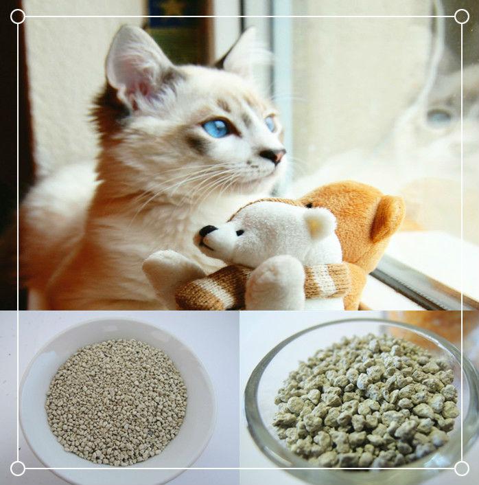 cats eyes explained