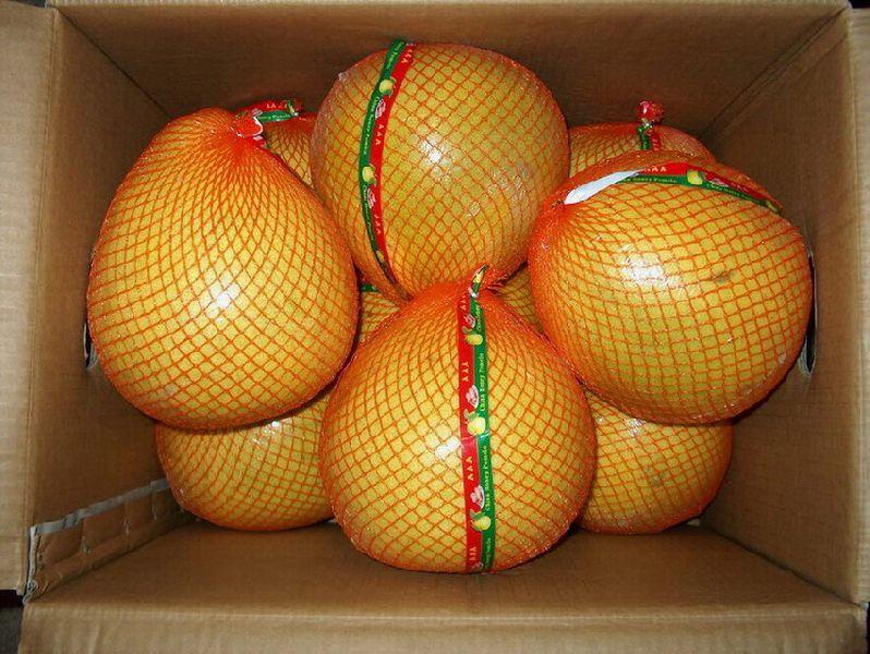 Honey Pomelo / Pomelo ruits from Eggypt