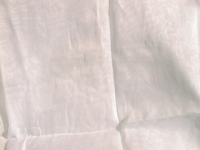 Cotton Organdy Fabric Manufacturer   Manufacturer from 2fca788eb