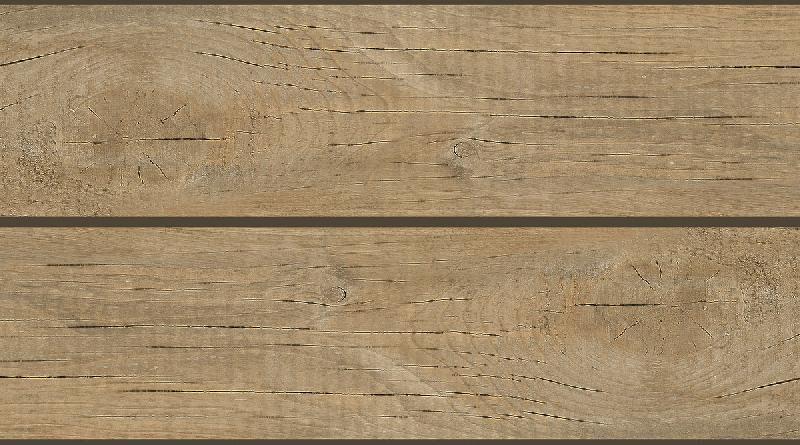 Wooden Series Wall Tiles (25x45)