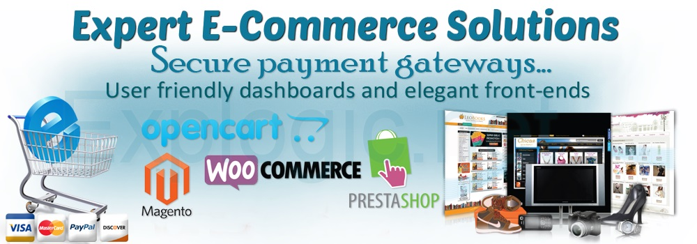 Ecommerce Website Designin Services