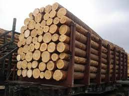 American Fine Wood Logs