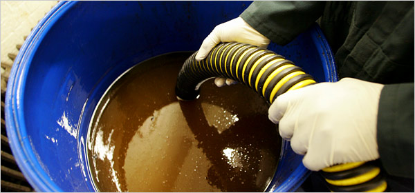 feasibility of used cooking oil and Waste vegetable oil recycling for bio-diesel production in essex & cambridgeshire table 1 shows estimated annual quantities of cooking oil available for.